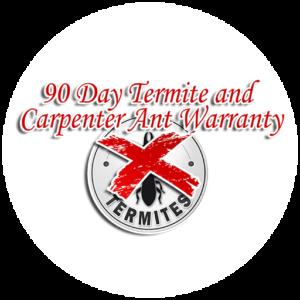 90 day termite
