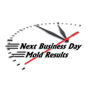 mold results